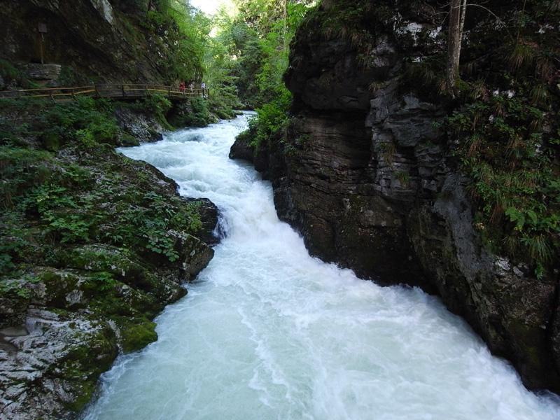 Slovenia-Vintgar國家公園1-大