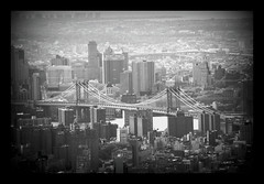 MANHATTAN BRIDGE B&W ? (NoaBorboleta) Tags: new york nyc bridge blackandwhite usa white ny newyork black blancoynegro america buildings puente blackwhite edificios north bridges paisaje empire manhattanbridge urbano manhatan paisajeurbano fromempire