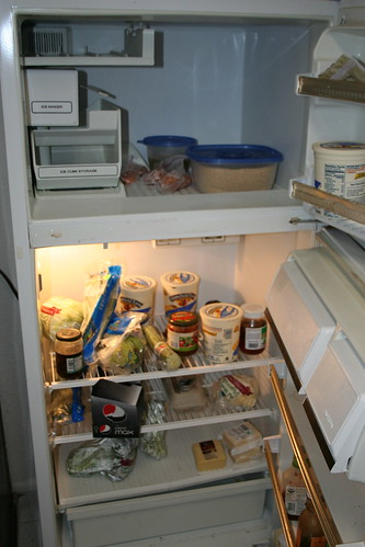 2009-04-26 - Fridge - 01 - The main bit