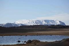 IMG_8115 (addytanyh) Tags: iceland myvatn