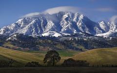 Mount Diablo (Matt Granz Photography) Tags: diablo mount mountain mt contracosta california antioch deervalley snow trees fiels landscape eastbay nikon d90 overtheexcellence flickrdiamond specland