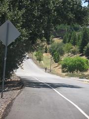 happy ending? (MannyAcosta) Tags: bike ride cycle change bonk rivendell
