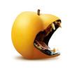 Leococca (Daniele Pauletto) Tags: strange fruit apricot
