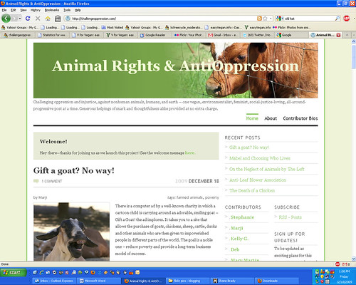 Animal Rights & AntiOppression Screenshot