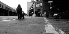 Street Scene (Airicsson) Tags: street new york city nyc urban blackandwhite bw usa white ny newyork black america island lumix us women noir crossing cross manhattan ground nb panasonic bmw streetphoto crossroads et blanc streetshot blackwhitephotos lx3