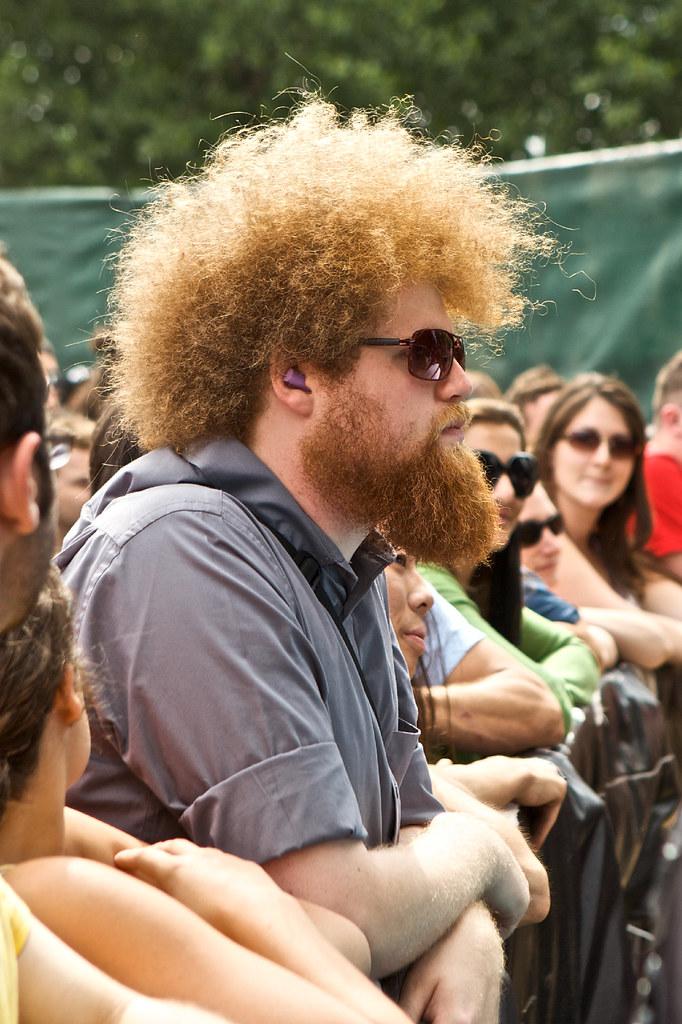 Fans @ Pitchfork Music Festival - 7/18/09
