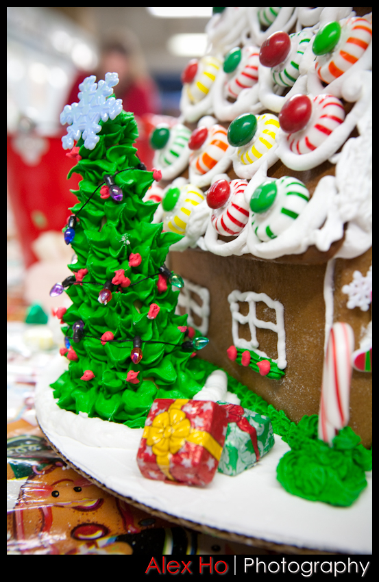 4210307522 8bf33b344e o Gingerbread House