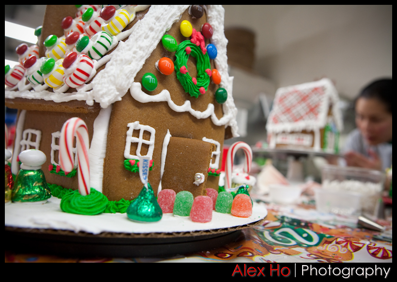 4210307640 ede3f6cb06 o Gingerbread House