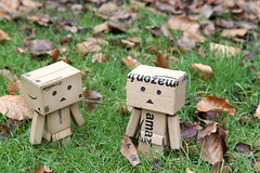 Hello - who are you? (Fairy_Nuff (new website - piczology.com!)) Tags: grass leaves canon eos cardboard 7d bogus danbo revoltech danboard msh02102 msh0210