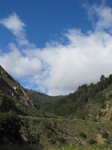 Partington Cove hike