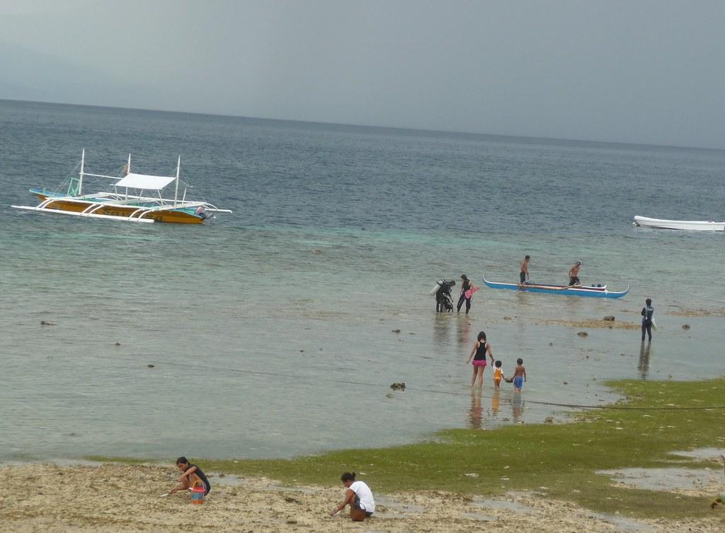 Cebu-Moal Boal (60)