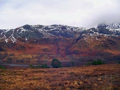 Slioch Loch Maree 03 (MolloF) Tags: cloud mist mountains water pine landscape scotland ross loch scots maree slioch wester
