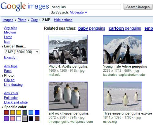 Google Image Toolbelt