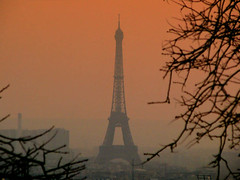 Paris Afternoon Glow