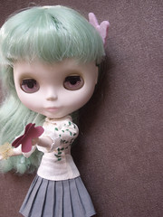 papillon 4 (Pinkwa') Tags: retro petal blythe ep enchanted butterfky