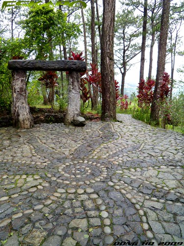 Garden By The Bay Maryknoll dong ho eskapo: maryknoll ecological sanctuary - baguio city