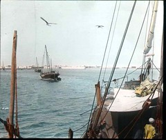 Approaching Berbera on the Tuna (The Field Museum Library) Tags: africa expedition mammals somalia zoology berbera 1896 carlakeley specimencollection dgelliot