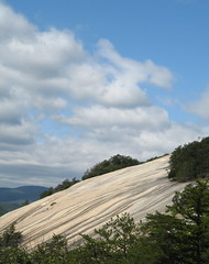 Steep slope (Joynes, North Carolina, United States) Photo