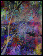 Pond Mist (Tim Noonan) Tags: urban colour tree art wall night digital photoshop pond manipulation legacy mosca hypothetical tistheseason vividimagination artdigital shockofthenew sotn sharingart maxfudge awardtree maxfudgeexcellence miasbest miasexcellence maxfudgeawardandexcellencegroup daarklands flickrvault magicunicornverybest trolledproud trolledandproud magiktroll newgoldenseal