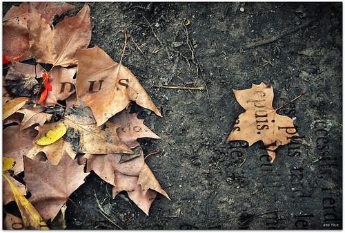 ganas de otoño