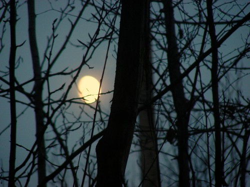 The waning gibbous moon as seen from my window shortly before I headed to the Elim Cafe for the NaNoWriMo kickoff.