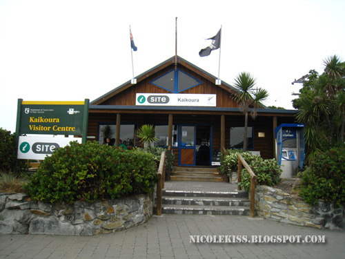 kaikoura information centre