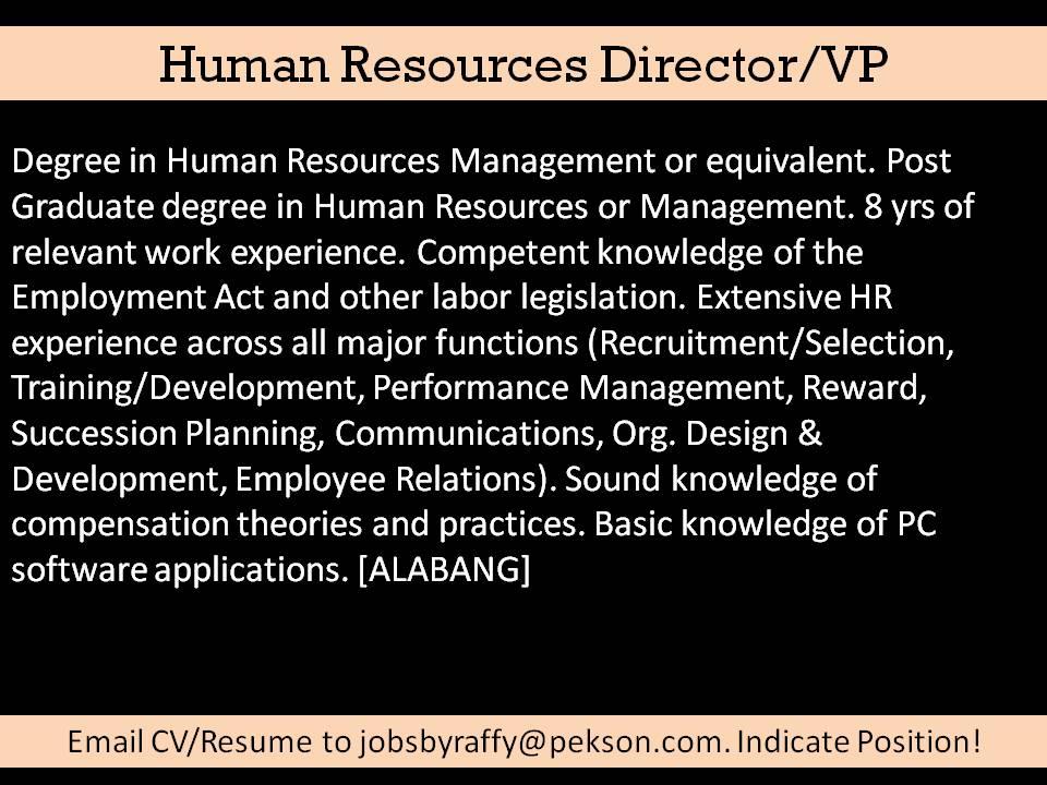 application development resume job description
