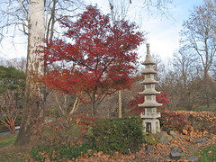 Korean maple and stupa