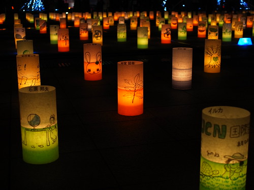 Ambient Candle Park 2009 R0010144