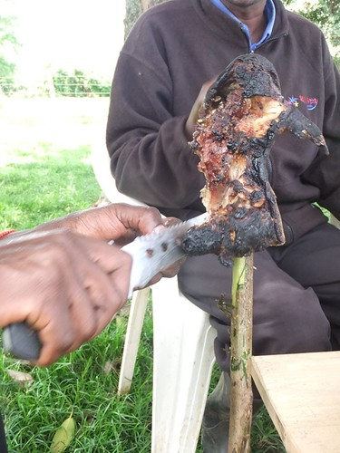 Paul was nice enough to slaughter a goat and serve some roasted goat head on a stick to the men and I as we communed under a tree. Graciously carved by Paul's son Joseph.
