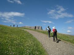 Dolomites, trekking around Seisler Alm - Escursioni all'Alpe di Siusi, Dolomiti