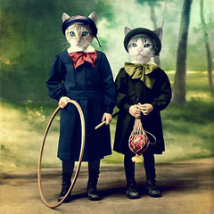 The good kids - les enfants sages (Martine Roch) Tags: portrait texture digital cat vintage kitten chat kitty photomontage chaton manray handcoloured petitechose martineroch taleofthecat redmatrix flypapertextures
