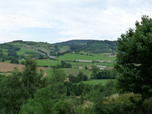 Love that Beaujolais view