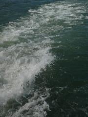(dmarsh451) Tags: water stlawrenceriver quebeccitycruise fleuvestlaurentwake
