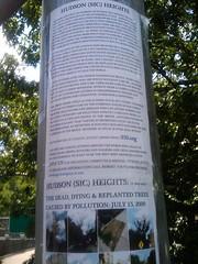 save the trees! near the GWB (katialondon) Tags: nyc summer georgewashingtonbridge july2009