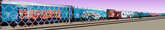 whole train OSF (kabhab) Tags: graffiti waterfall sydney kings graff operation kero bombing pnut germs risto ultracolour roms scramo osf zombe zamz ohsofresh onlysydneysfinest