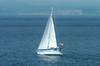In Haro Strait 3