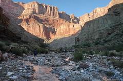Hiking Kwagunt Canyon (Chief Bwana) Tags: grandcanyon grandcanyonnationalpark nationalparks canyons kwagunt kwaguntcanyon hiking arizona psa104 chiefbwana 500views 1000views