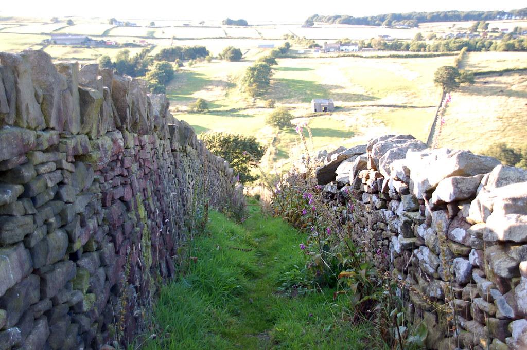 El camino hacia Lumbfoot
