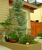 Stylish Planter (boisebluebird) Tags: flowers plants plant flower garden gardening landscaping boise flowerpot yardart landscapedesign michaeltoolson bosiegardens boisebluebirdcom httpwwwboisebluebirdcom boiselandscaping boisegardener
