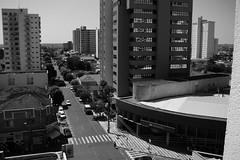 Araçatuba/SP (Éderson Silva) Tags: city cidade brasil skyline olhar sony paisagem urbano aérea prédios h9 urbanidades arquiteto ambienteurbano araçatuba éderson éassimueeuvejo