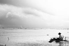 Le pêcheur de Zanzibar 2 (orang_asli) Tags: africa sea portrait people mer seaweed beach water landscape tanzania coast eau côte zanzibar farmer paysage plage lieux afrique aficionados cte métier naturel peuples tanzanie algue jambiani géographie agriculteur gographie tanzanien mtier