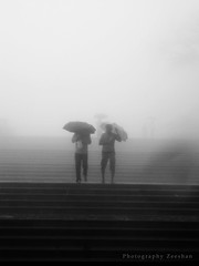 ... (zeeography) Tags: mist rain fog stairs umbrella atmosphere coorg madikeri ilovedit itwasfreakingcold andwindy rainscape thalacauvery