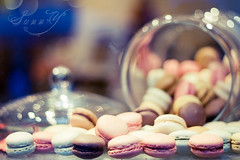 A balanced diet is a cookie in each hand~ (Pink Pixel Photography (f.k.a. Sunny)) Tags: canonef50mmf18 sweets windowshopping niftyfifty canoneos400d macrons hnff wwwpinkpixelat pinkpixelphotography gettyholidays2010