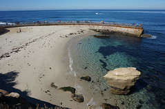 Children's Pool (rovingmagpie) Tags: california lajolla seawall seals sealions childrenspool childrensbeach valday2014
