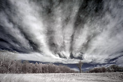 Cloud Flames (Jim.Collins) Tags: clouds infrared landscape scenicsnotjustlandscapes pennypack pennypackecologicalrestorationtrust pennypacknaturepreserve breathtakinglandscapes