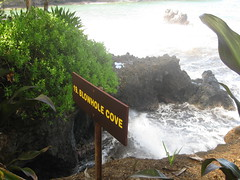 Blowhole Cove, Hawaii Tropical Botanical Garden