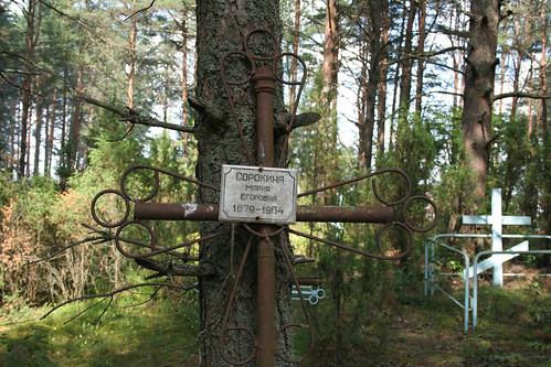 Селигер-2009. Кладбище за главной (гостевой) сценой
