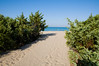 due passi verso il mare (fabiofotografie) Tags: mare estate riva dune salento puglia spiaggia vacanze pineta campeggio rivadiugento fabiofotografie fabiopierboni