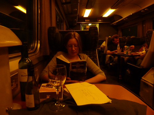 Reading in the lounge car